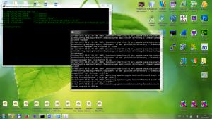 пример использования tomcat (java servlet)